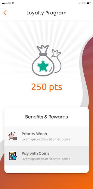 The Laundry-Hub Loyalty Program